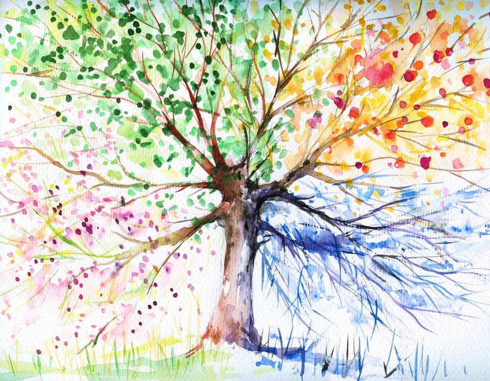 Watercolor of tree in different seasons